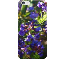 Don's Hovea iPhone Case/Skin