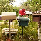 Mob of Letterboxes - Underwood, Tasmania by RainbowWomanTas