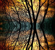 Sunset Tree Silhouette Abstract 3 by Bo Insogna