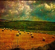 Pastoral by Chris Lord