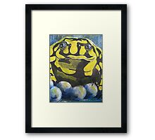 Australian Endangered Corroboree Frog Guarding Eggs Alternate 2 Framed Print