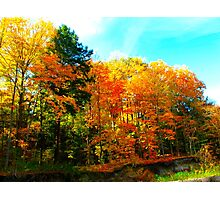 Toy soldiers of Autumn Photographic Print