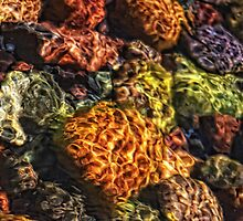 Lake Superior Rocks!  by Angela King-Jones