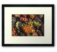 Lake Superior Rocks!  Framed Print