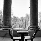 Casa Foscari   by Karen E Camilleri