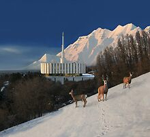 Winter Guests at the Provo Temple 20x24 by Ken Fortie