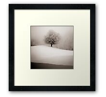 winter degradee Framed Print