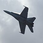 F-18 display by Bairdzpics