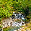 Mountain stream, Japan Alps, Japan. by johnrf