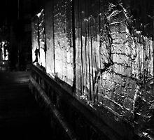 Enlighten me... by Nicoletté Thain Photography