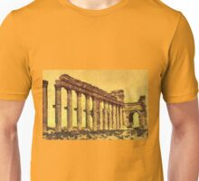 Colonnade and Triumphal Arch (193 to 211 CE) Palmyra, Syria  Unisex T-Shirt