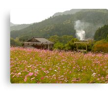 Wildflowers, Ohara, Kyoto, Japan Canvas Print