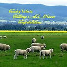 *Banner - Country Victoria* by EdsMum
