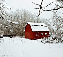 The Red Barn....North Style by peaceofthenorth