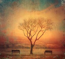 Between Two Benches by Tara  Turner