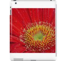 Red Flower iPad Case/Skin