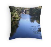 River Oasis Throw Pillow
