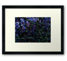 Walkway. Framed Print