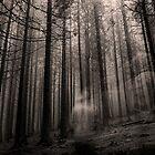 Ghost by kumari