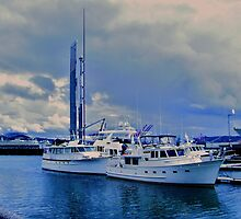 Harbor Blues On Puget Sound, WA by ANNA MCALISTER
