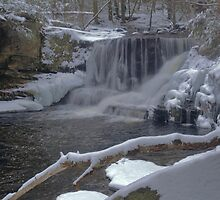 Waterfall Winterscape by Stephen Vecchiotti