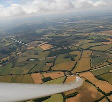 Thermals and Gliders. by sandyprints
