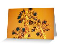 Redscale Palmtrees Greeting Card