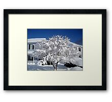 Snowfall 2011  ^ Framed Print