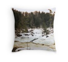 Rushing into winter Throw Pillow