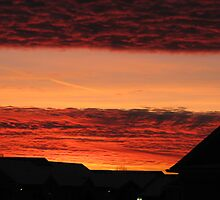 December Sky on Fire - View III by catesemporium