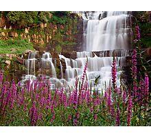 Chittenango Falls Photographic Print