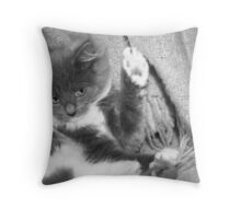 I haven't really been scratching the throw...honest! Throw Pillow