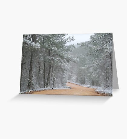 No Snow For the Road Greeting Card
