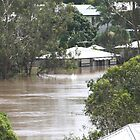 Floods by betty porteus