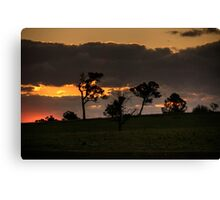 Sunset At Badgery's Creek (2) Canvas Print