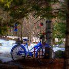 Snow Ride by Monica M. Scanlan