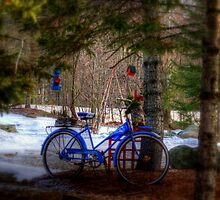 Snow Ride by Monica M. Scanlan
