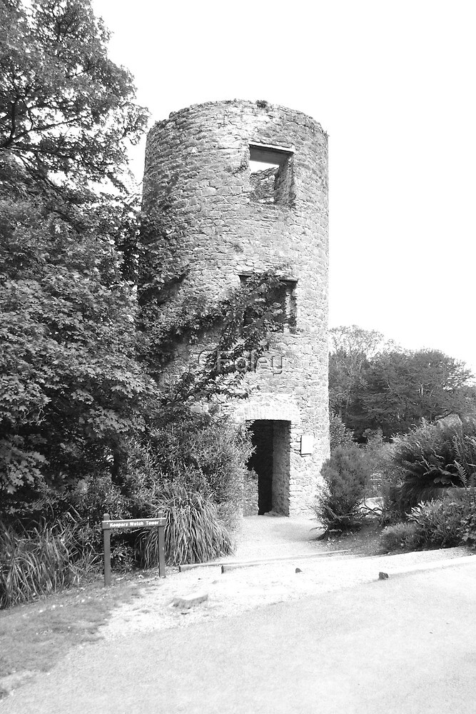 Keepers Tower, Blarney Castle by CFoley