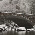 Snowy Crossing - bridge in Bridalveil meadow by Alan Gaulding