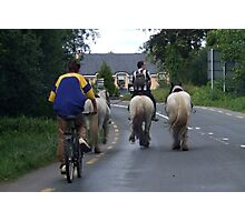Irish Traffic-Jam Photographic Print