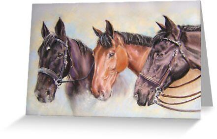 Robinsons' horses by Redbarron