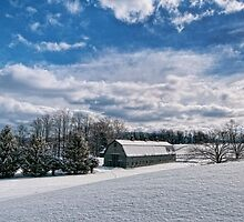 Dusted With Snow by Claudia Kuhn