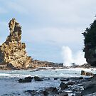 Eagle Rock, Bunurong Marine Park, near Inverloch, Victoria. by johnrf