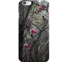 Blossoms bloom in spring iPhone Case/Skin
