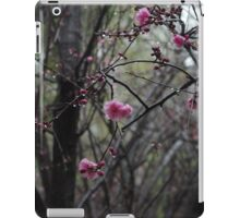 Blossoms bloom in spring iPad Case/Skin