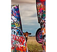 Cadillac Cows III Photographic Print