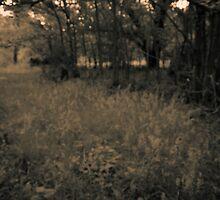 Alone... by Samuel Gundry
