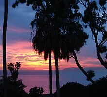 Blazing Catalina Island Sunset by Joni  Rae