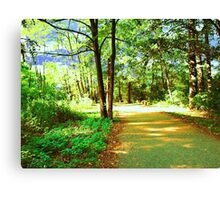digital oil painting of a forest road Canvas Print