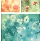 Collection ~ Flowers by Anne Staub